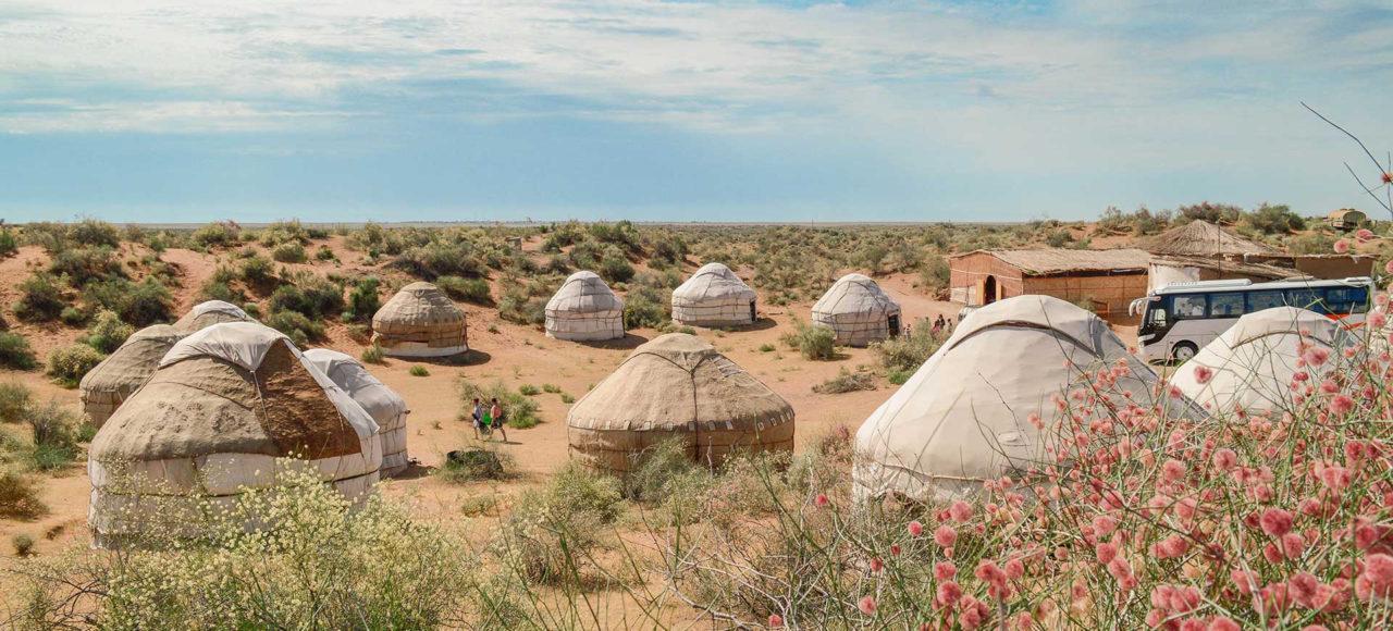 3 day Camel Tour in Kyzyl-kum desert - Bukhara, Nurota, Aydarkul lake, Nurata city, Uzbekistan,